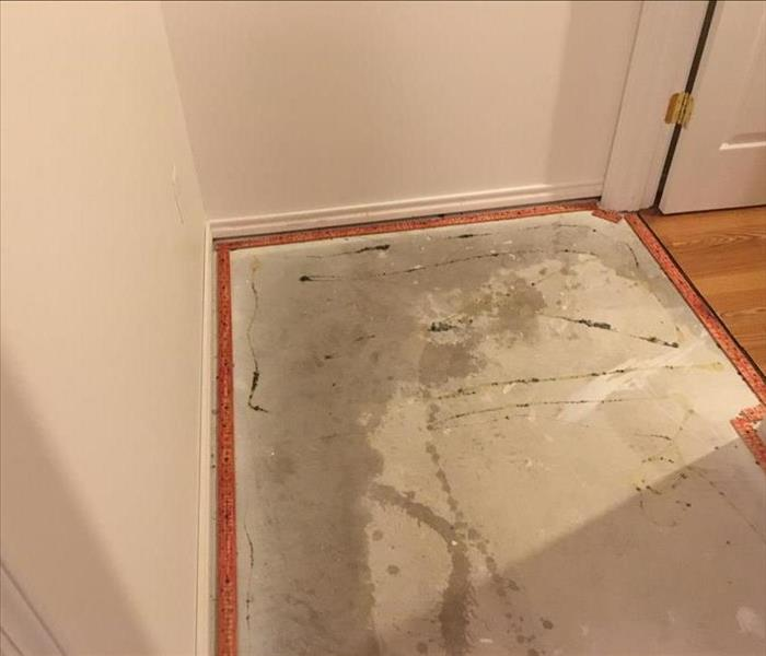 Damaged Carpet From Storm