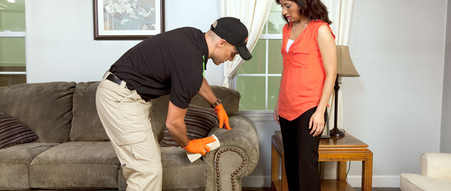 Troy, MO carpet upholstery cleaning